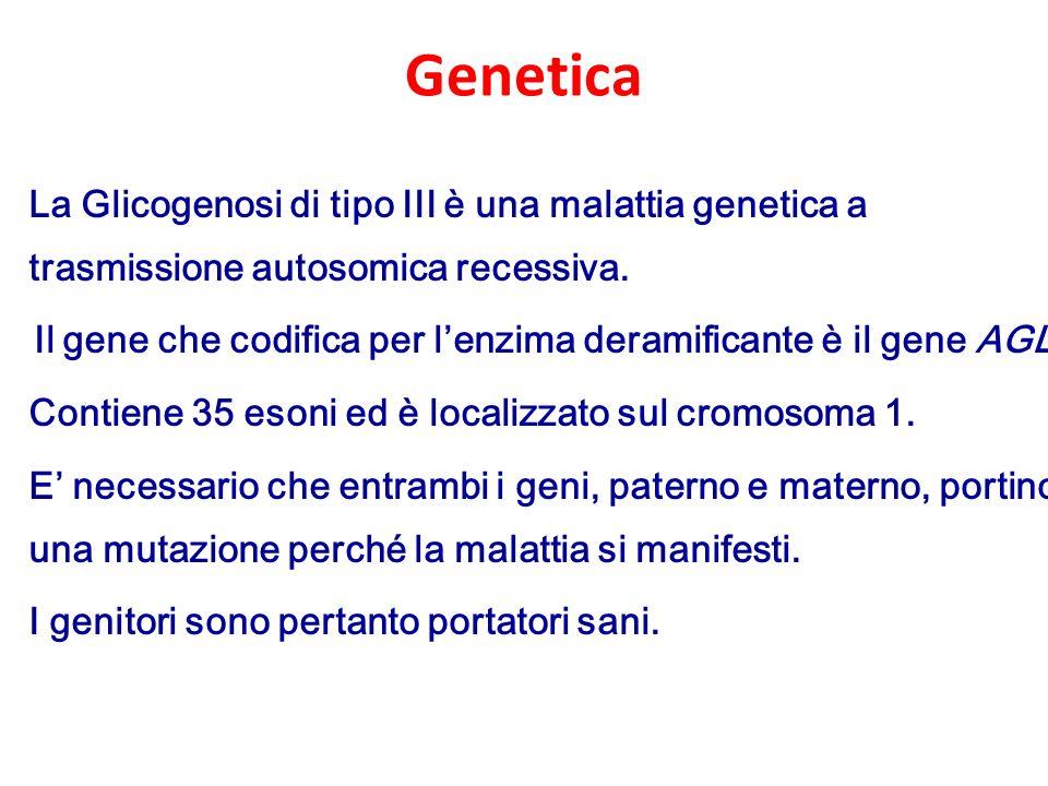Genetica La Glicogenosi di tipo III è una malattia genetica a trasmissione autosomica recessiva.