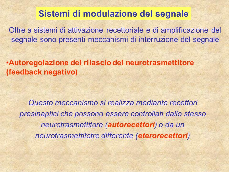 Sistemi di modulazione del segnale