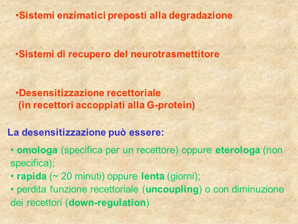 Sistemi enzimatici preposti alla degradazione