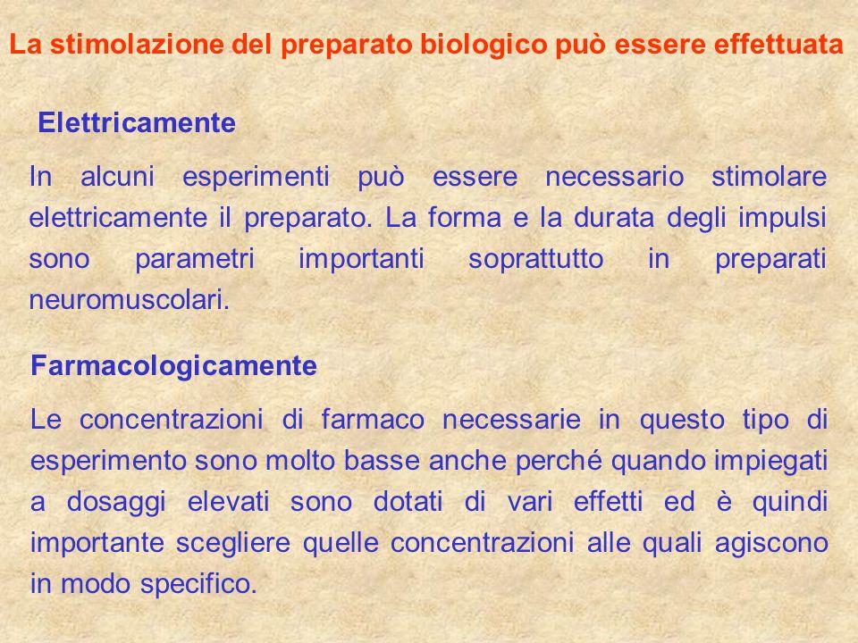 La stimolazione del preparato biologico può essere effettuata