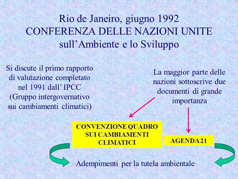 CONVENZIONE QUADRO SUI CAMBIAMENTI CLIMATICI