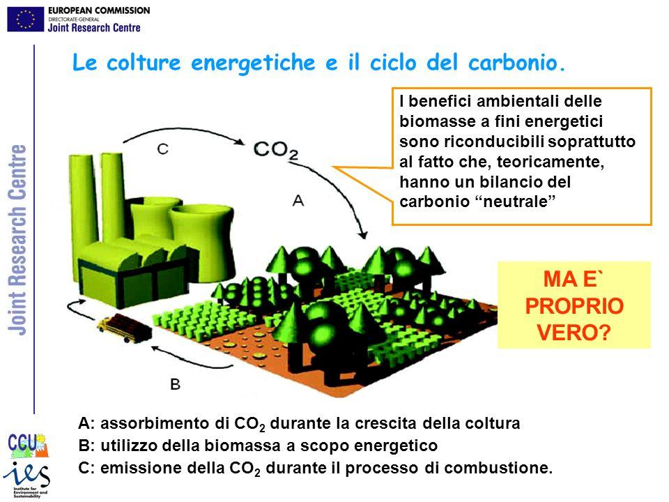 Le colture energetiche e il ciclo del carbonio.