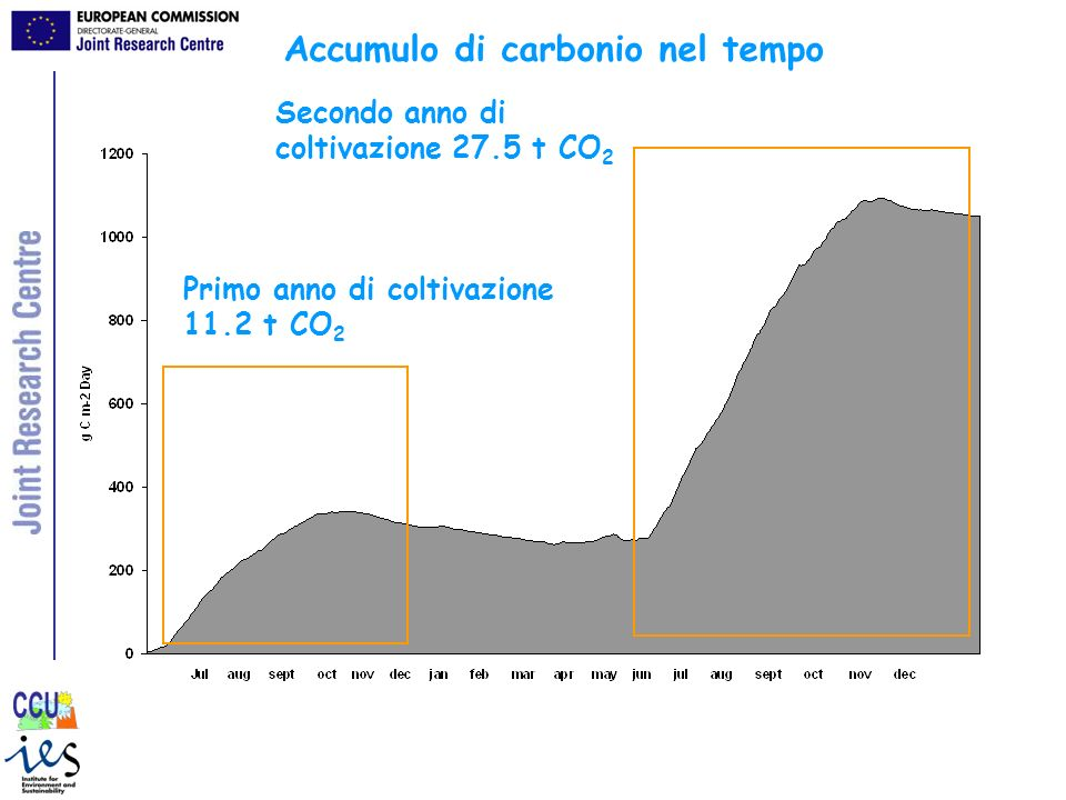 Accumulo di carbonio nel tempo