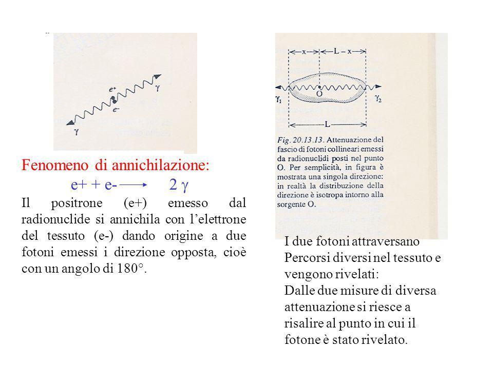 Fenomeno di annichilazione: e+ + e- 2 g