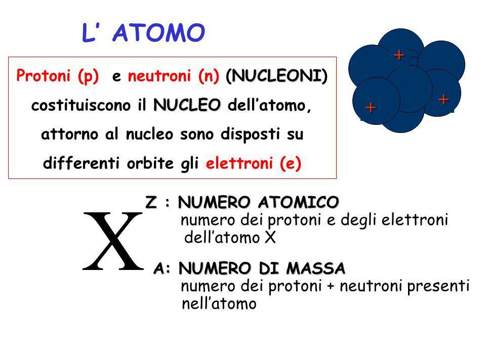 X L' ATOMO + Protoni (p) e neutroni (n) (NUCLEONI)