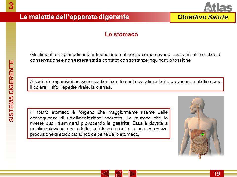 3 Le malattie dell'apparato digerente Obiettivo Salute Lo stomaco