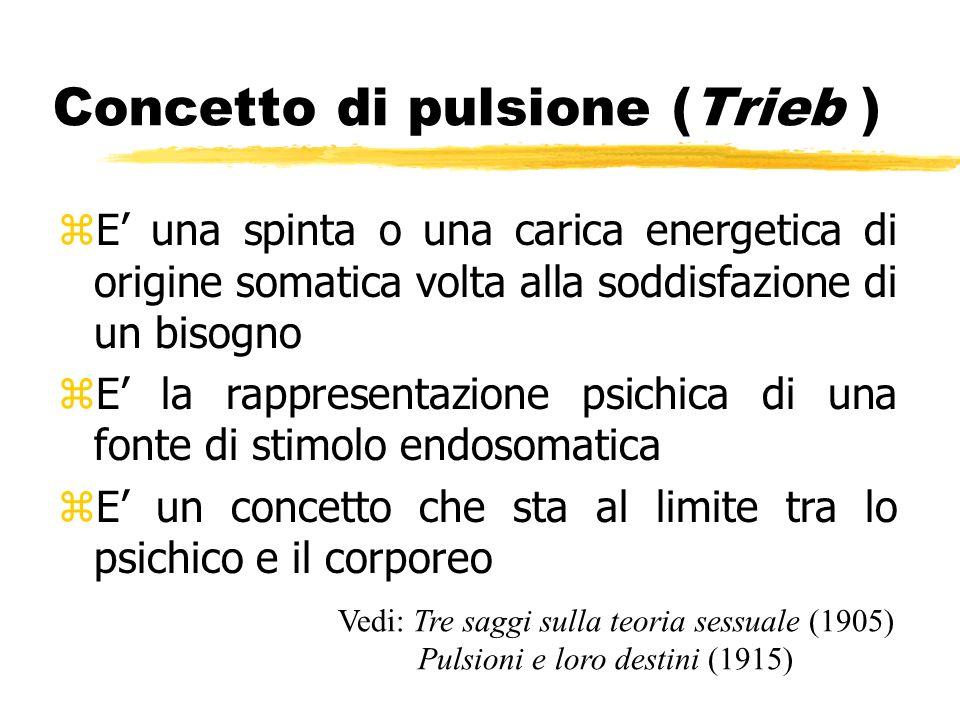 Concetto di pulsione (Trieb )