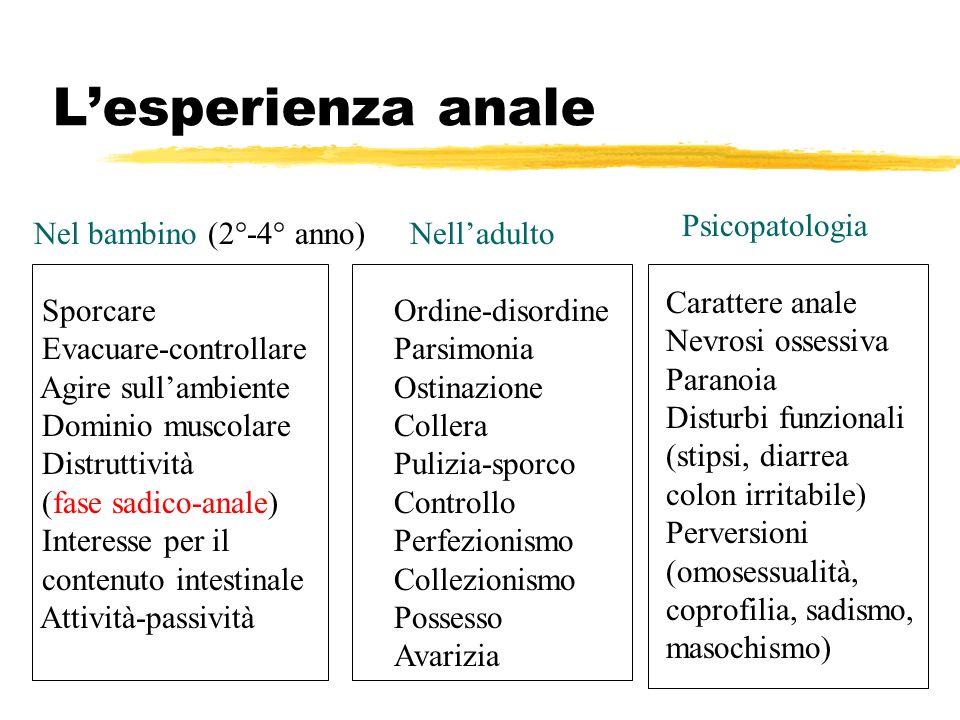 L'esperienza anale Psicopatologia Carattere anale Nevrosi ossessiva