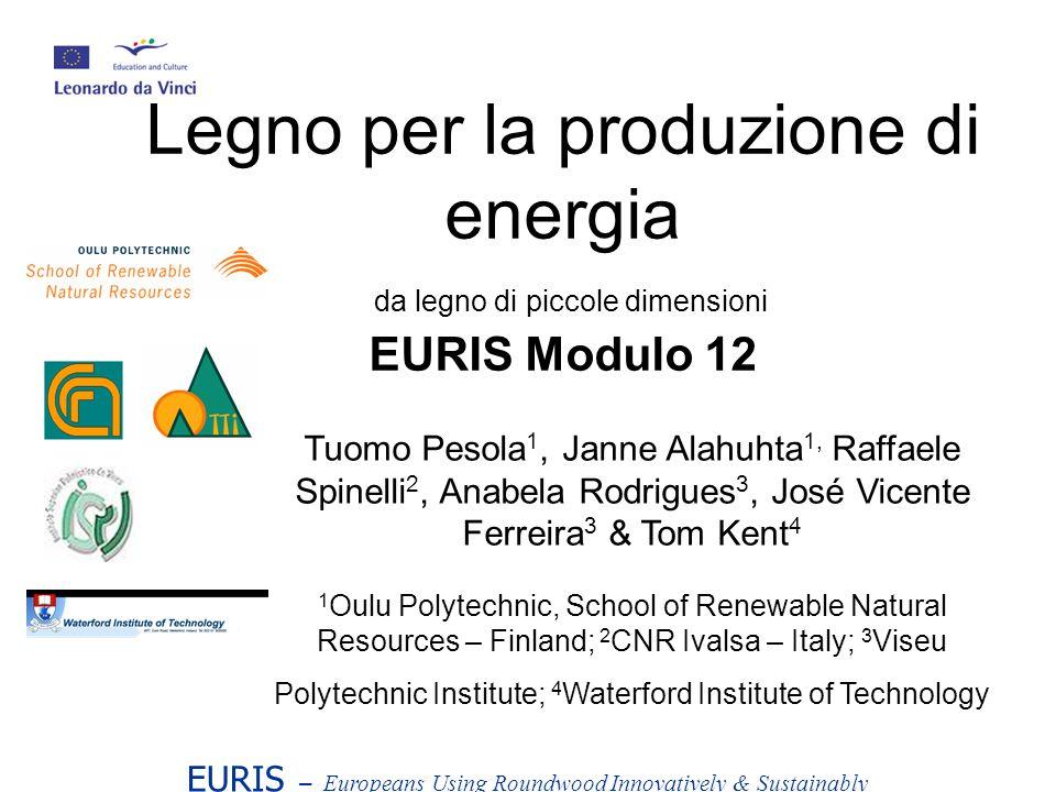 Legno per la produzione di energia da legno di piccole dimensioni EURIS Modulo 12