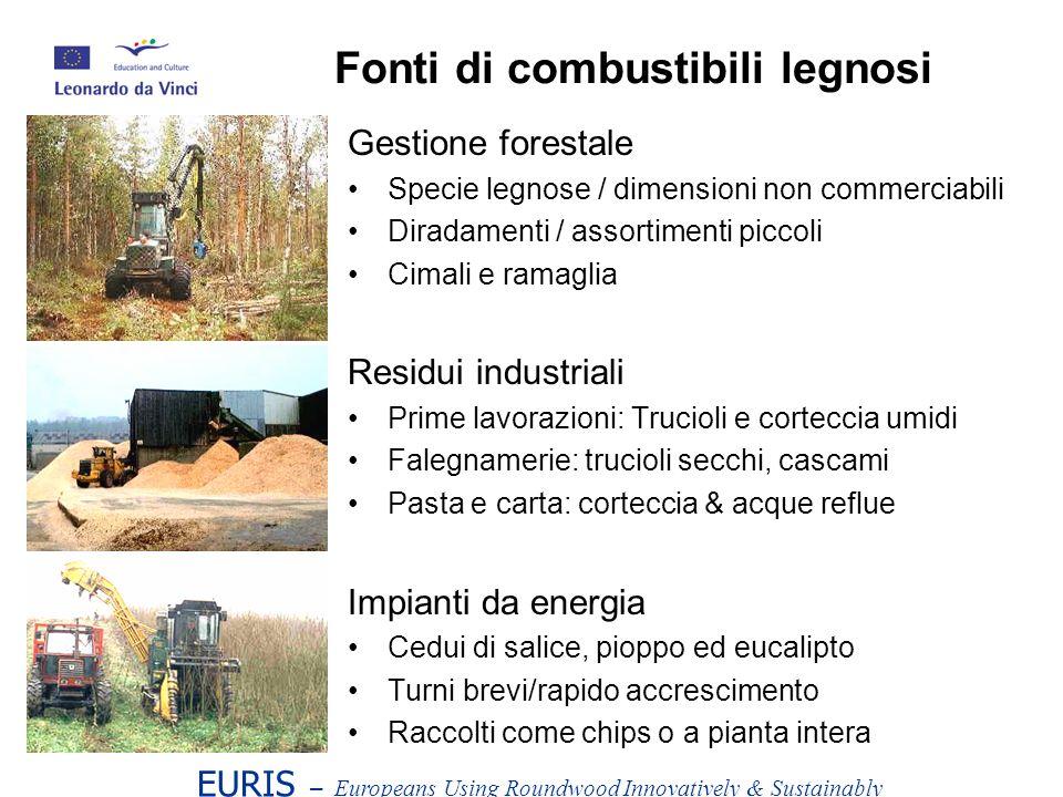 Fonti di combustibili legnosi