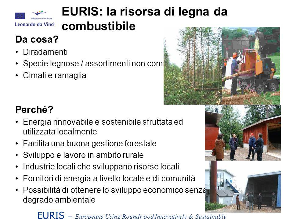 EURIS: la risorsa di legna da combustibile