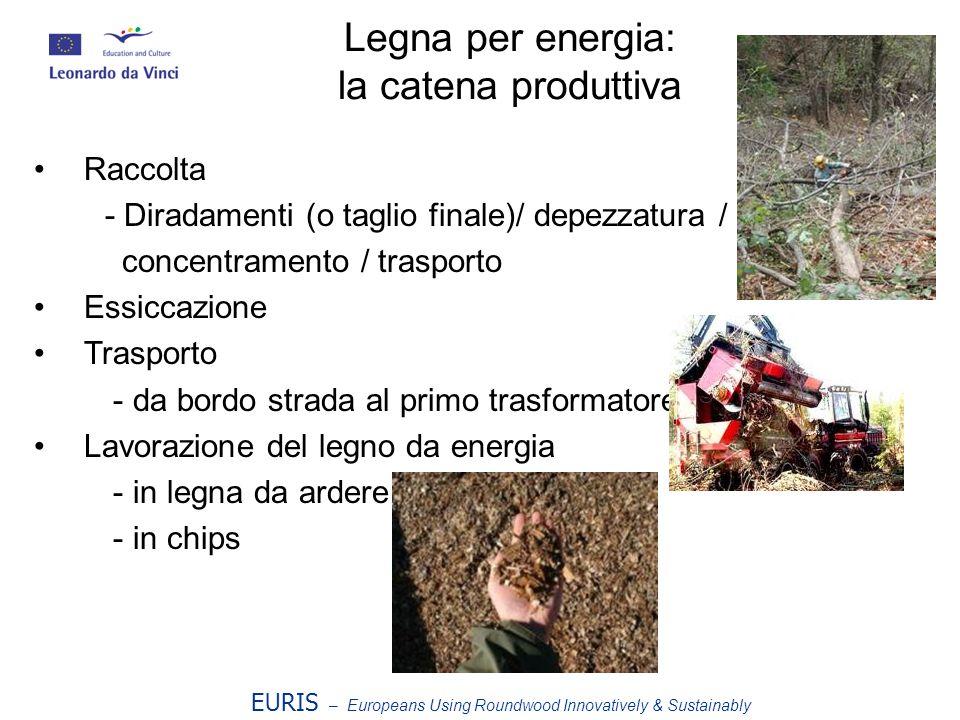 Legna per energia: la catena produttiva