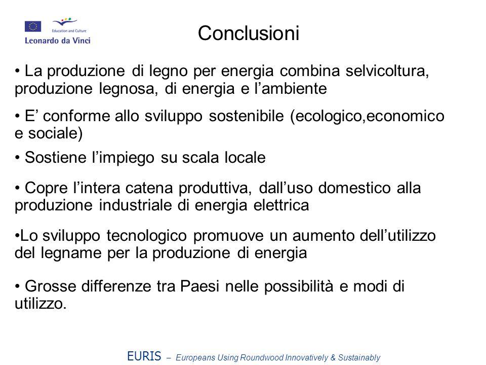 Conclusioni La produzione di legno per energia combina selvicoltura, produzione legnosa, di energia e l'ambiente.