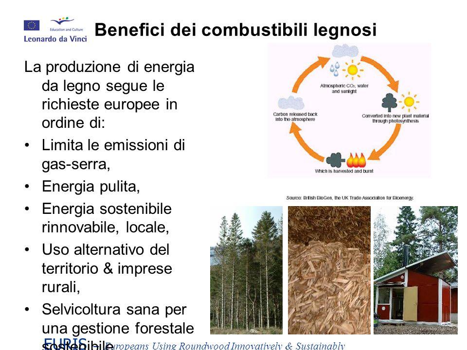 Benefici dei combustibili legnosi