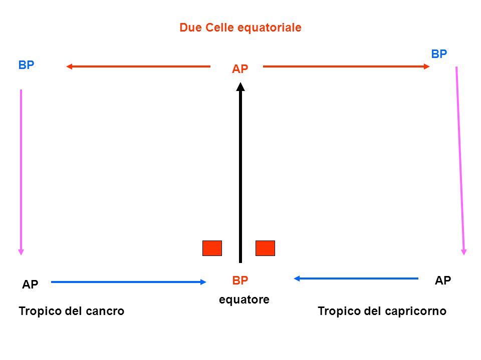 Due Celle equatoriale BP BP AP BP AP AP equatore Tropico del cancro Tropico del capricorno