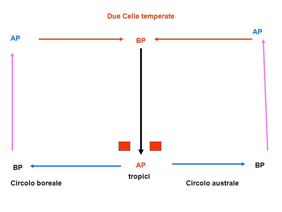 Due Celle temperate AP AP BP AP BP BP tropici Circolo boreale Circolo australe