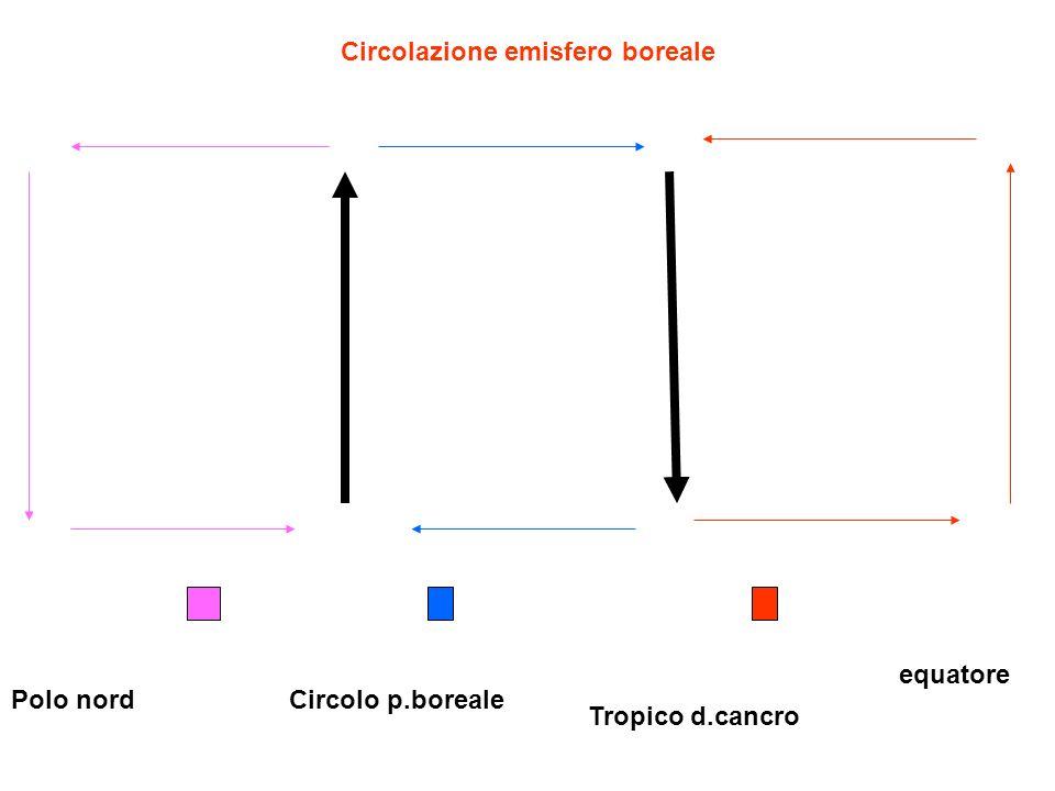 Circolazione emisfero boreale