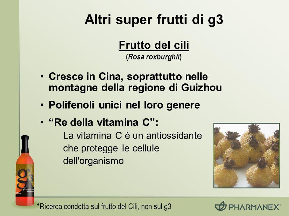 Altri super frutti di g3 Frutto del cili