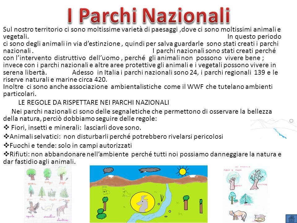 I Parchi Nazionali