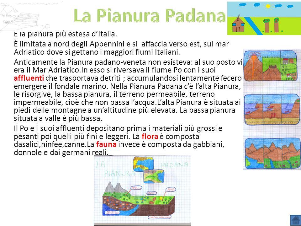 La Pianura Padana È la pianura più estesa d'Italia.