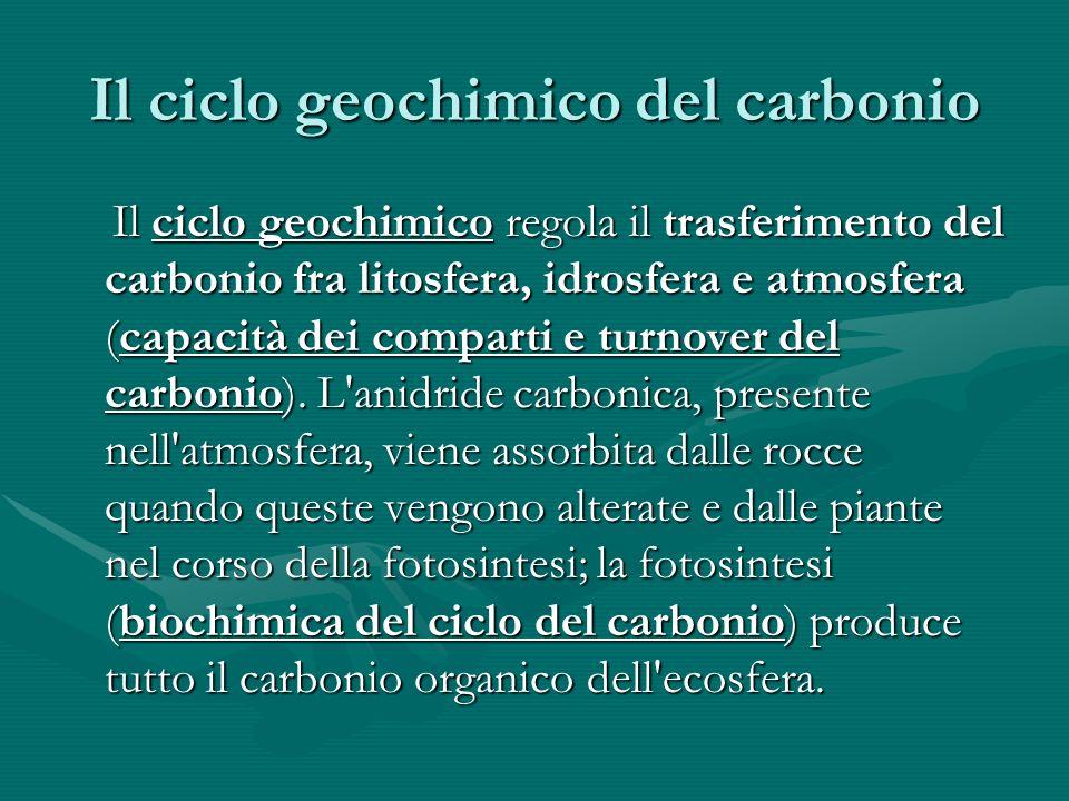 Il ciclo geochimico del carbonio