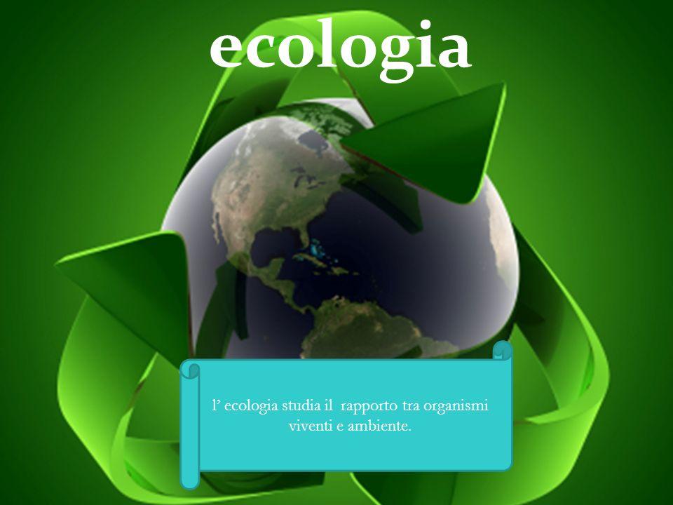 l' ecologia studia il rapporto tra organismi viventi e ambiente.