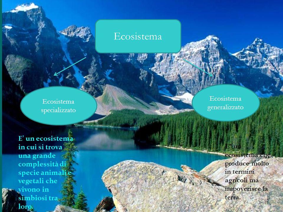 Ecosistema Ecosistema generalizzato Ecosistema specializzato