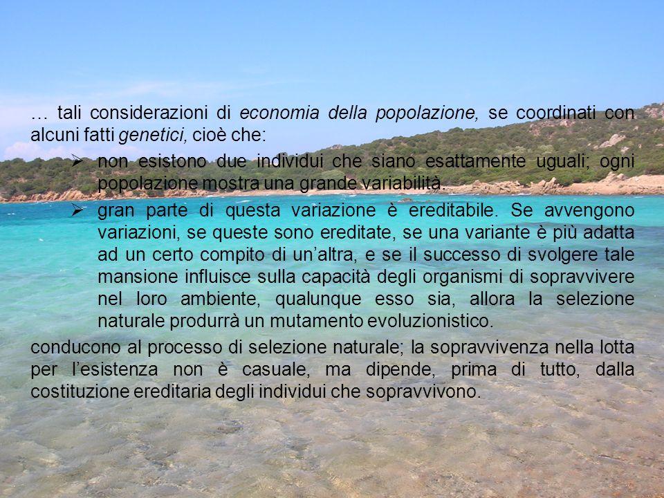 … tali considerazioni di economia della popolazione, se coordinati con alcuni fatti genetici, cioè che: