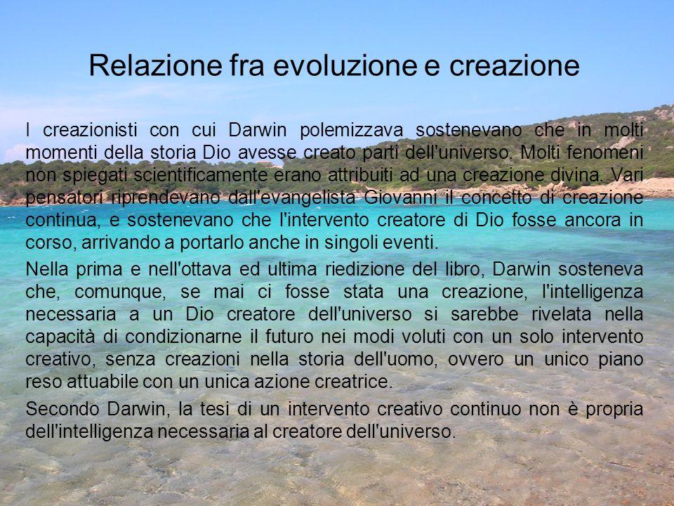 Relazione fra evoluzione e creazione