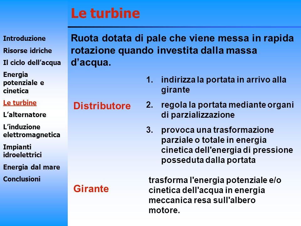 Le turbine Ruota dotata di pale che viene messa in rapida rotazione quando investita dalla massa d'acqua.