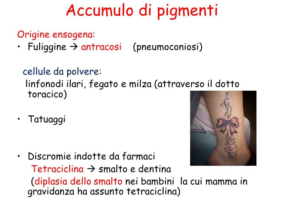 Accumulo di pigmenti Origine ensogena: