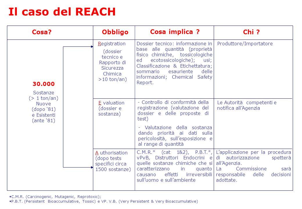 (dossier tecnico e Rapporto di Sicurezza Chimica