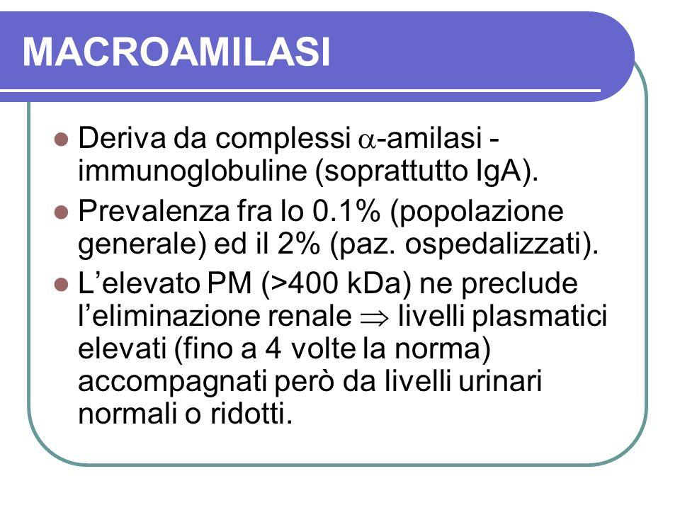 MACROAMILASI Deriva da complessi -amilasi - immunoglobuline (soprattutto IgA).