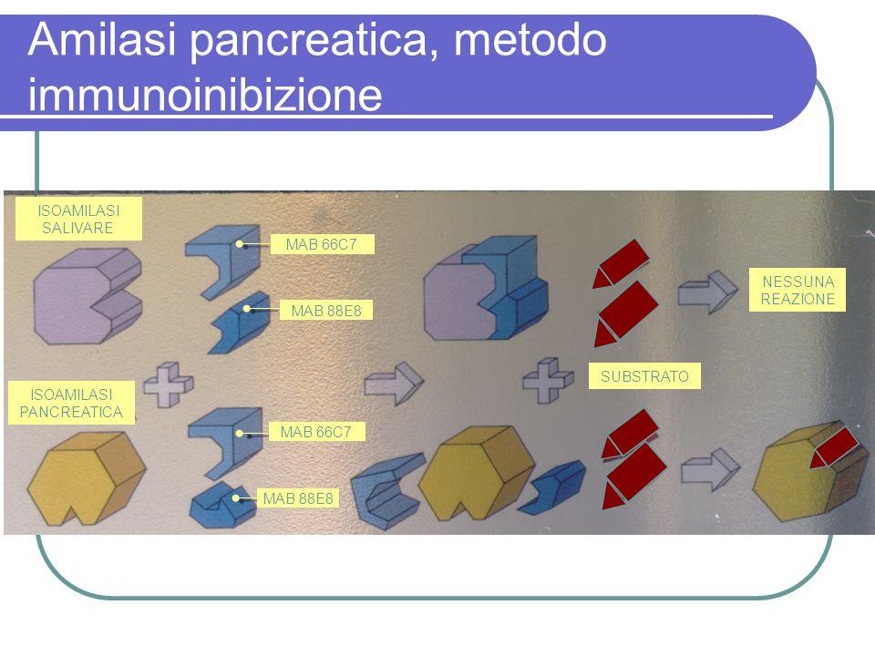 Amilasi pancreatica, metodo immunoinibizione