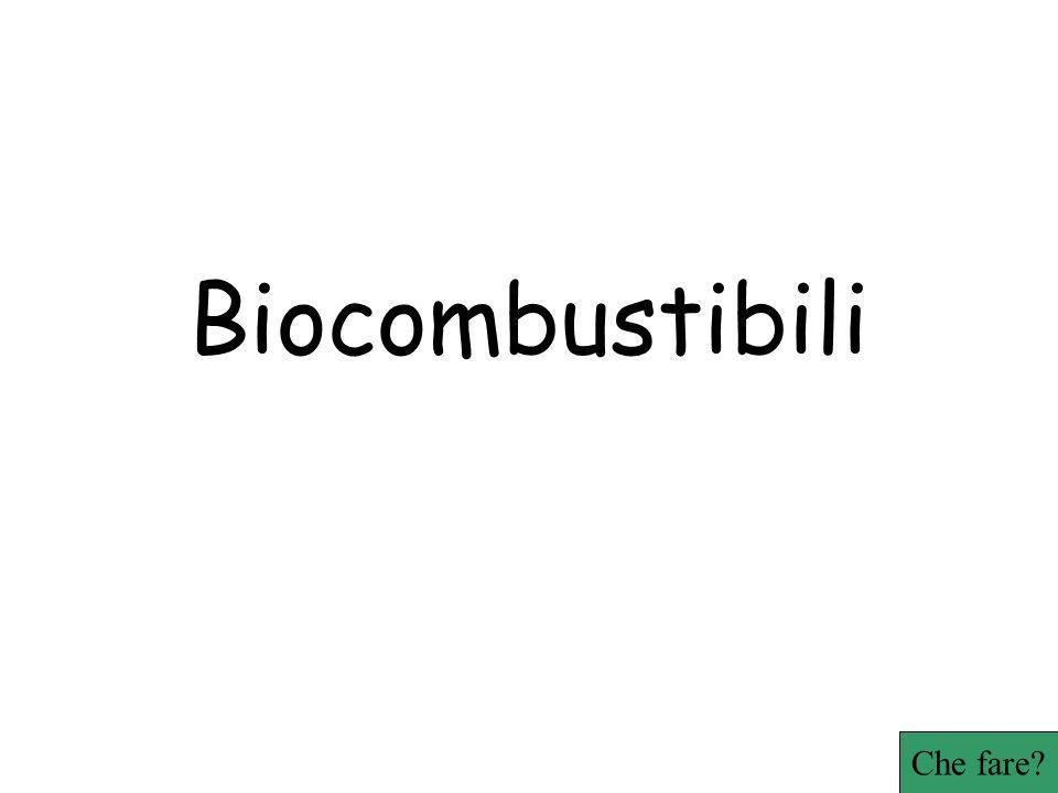 Biocombustibili Che fare