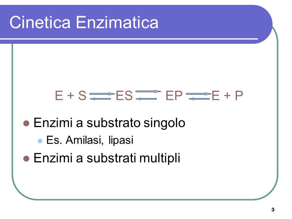 Cinetica Enzimatica E + S ES EP E + P Enzimi a substrato singolo
