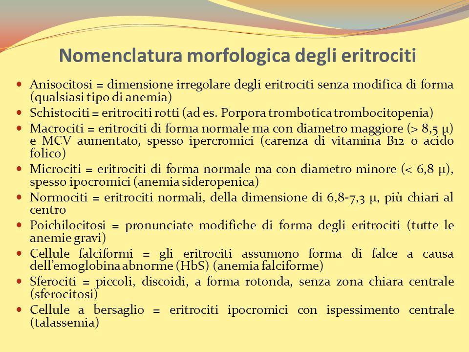 Nomenclatura morfologica degli eritrociti