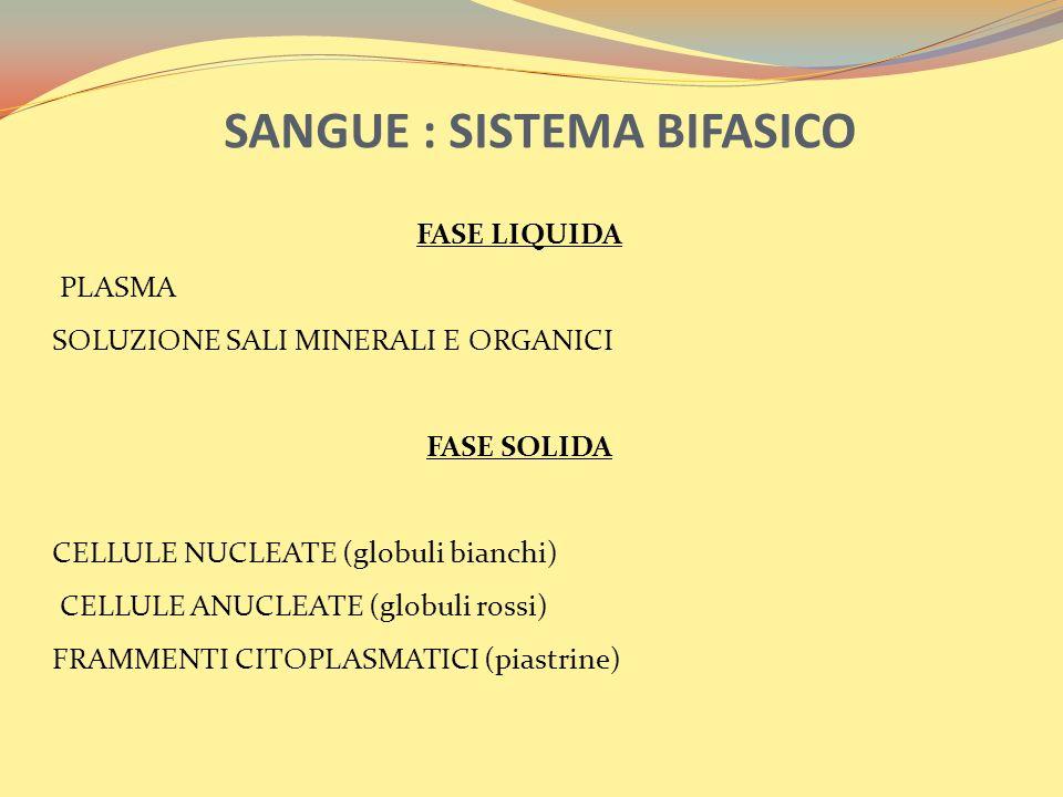 SANGUE : SISTEMA BIFASICO