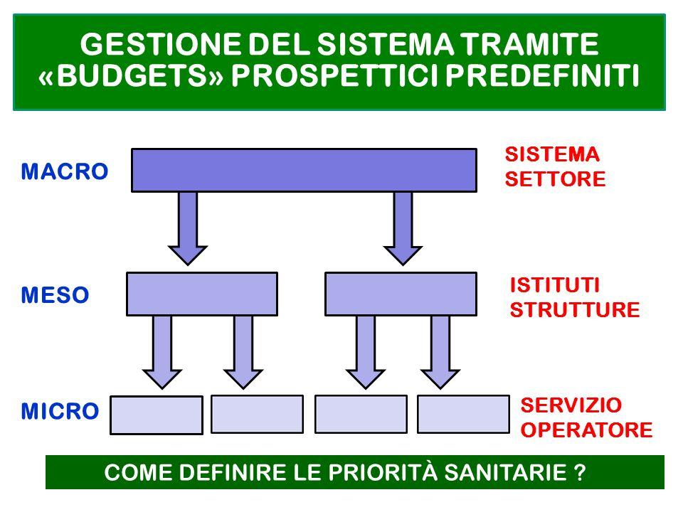 GESTIONE DEL SISTEMA TRAMITE «BUDGETS» PROSPETTICI PREDEFINITI