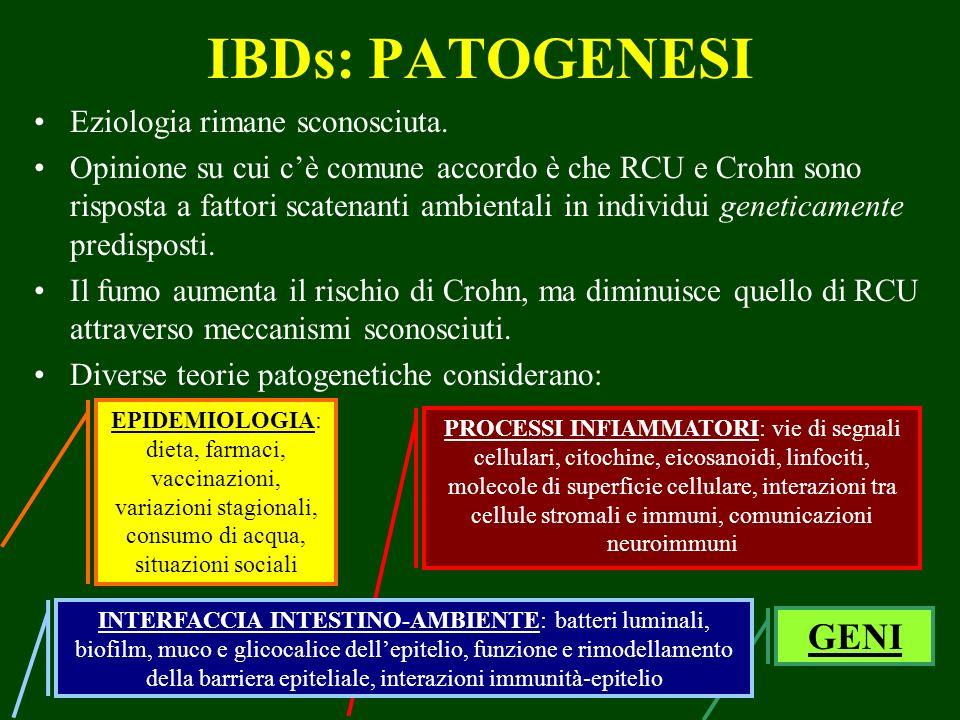 IBDs: PATOGENESI GENI Eziologia rimane sconosciuta.