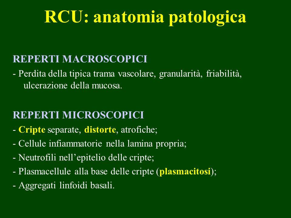 RCU: anatomia patologica