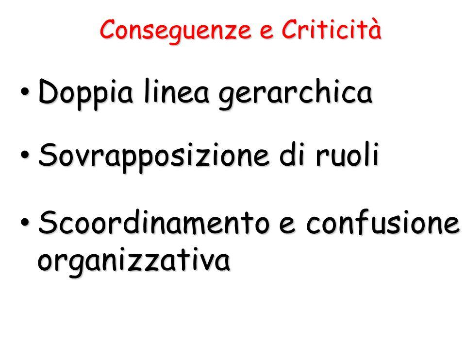 Conseguenze e Criticità