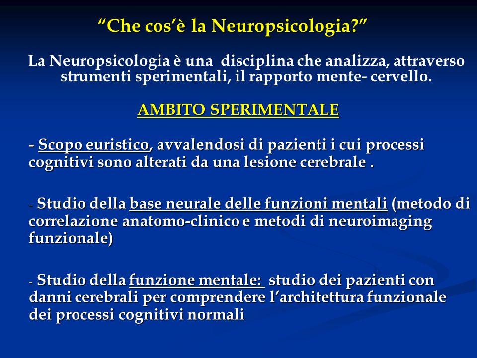 Che cos'è la Neuropsicologia