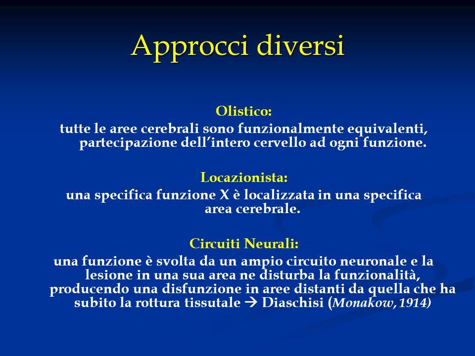 Approcci diversi Olistico: