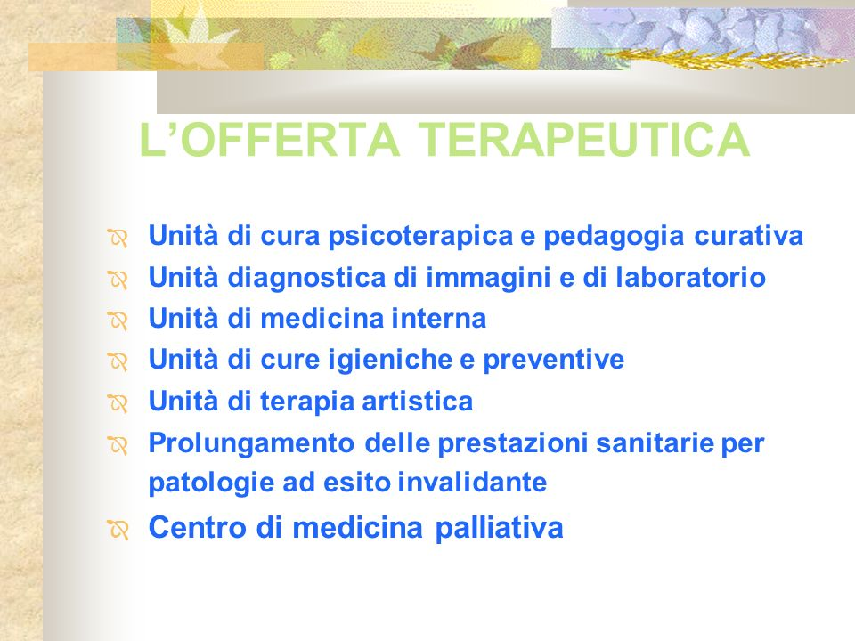 L'OFFERTA TERAPEUTICA