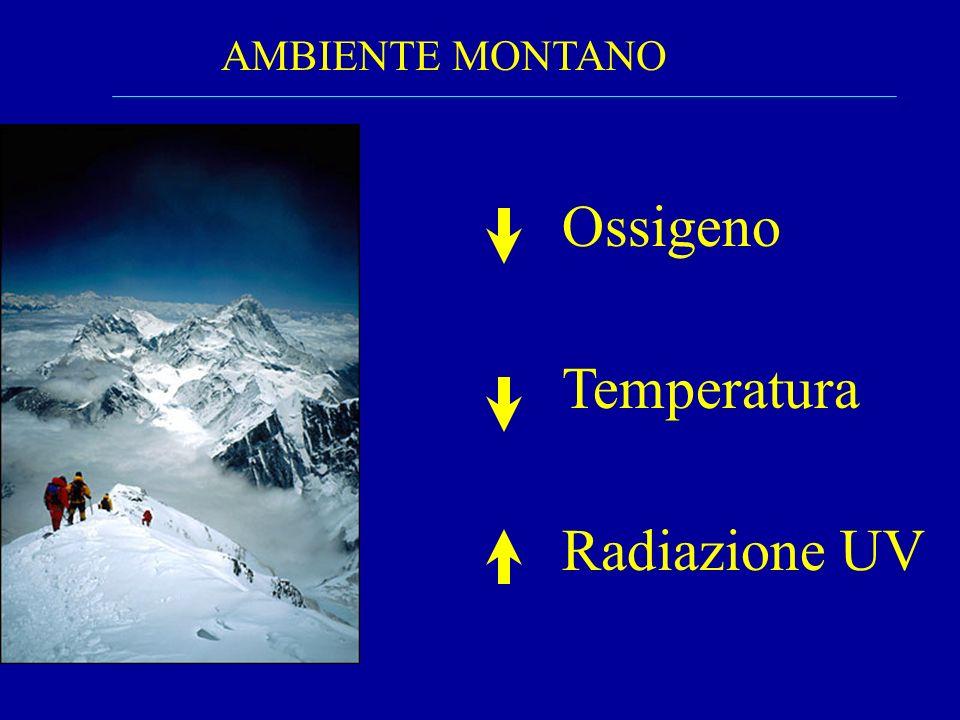 AMBIENTE MONTANO Ossigeno Temperatura Radiazione UV