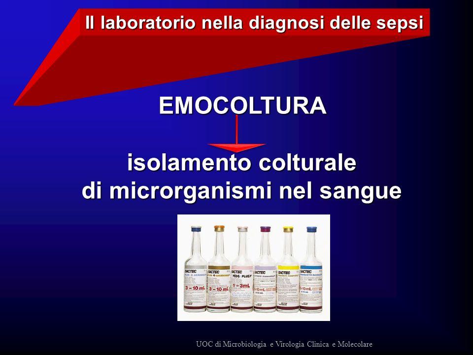 Il laboratorio nella diagnosi delle sepsi di microrganismi nel sangue