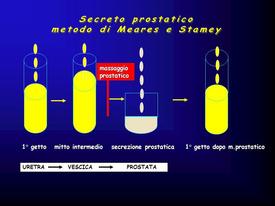 metodo di Meares e Stamey
