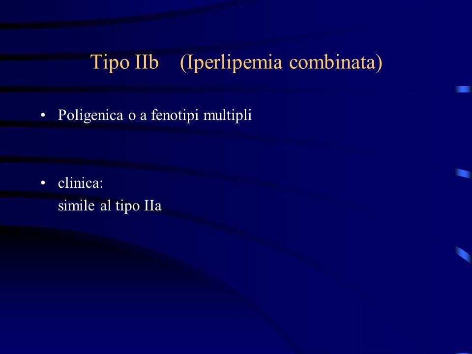 Tipo IIb (Iperlipemia combinata)