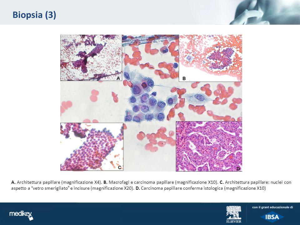 Biopsia (3)